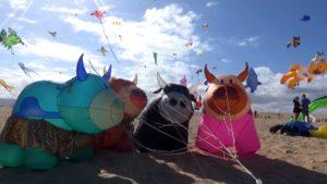 Fuerteventura International Kite Festival 2017